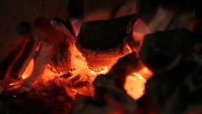 Brännande kol, brand stock video