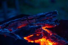 Brännande kol i fireplasen royaltyfri bild