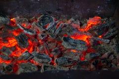 Brännande kol i fireplasen royaltyfri fotografi