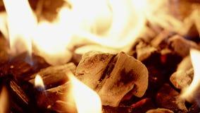 Brännande kol i galler arkivfoto