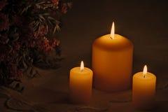 Brännande stearinljus med blommor royaltyfri fotografi