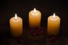 Brännande stearinljus med blommor i vatten arkivfoto