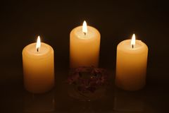 Brännande stearinljus med reflexions- och lilablommor fotografering för bildbyråer