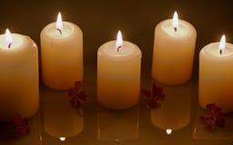 Brännande stearinljus med vattenreflexion och blommor royaltyfri fotografi
