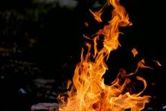 Brännande trän på bottenvåningen med en flamma och en brand som gristrar i utomhus- ställe med mörk bakgrund royaltyfri foto