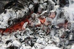 brännande varmt kol i gallerslutet upp royaltyfri bild