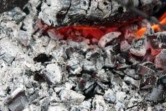 brännande varmt kol i gallerslutet upp fotografering för bildbyråer