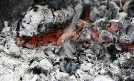 brännande varmt kol i gallerslutet upp royaltyfria foton