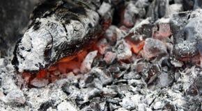 brännande varmt kol i gallerslutet upp royaltyfria bilder
