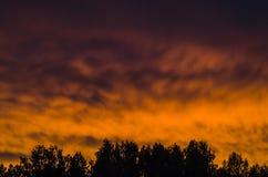 brännhet solnedgång Arkivfoto