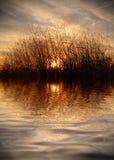 Brännhet solnedgång på sjön Arkivfoto