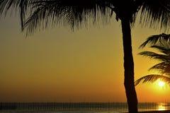 Brännhet strandsolnedgång royaltyfria bilder