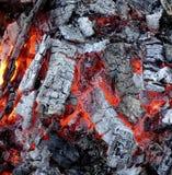 Bränning för Wood kol Royaltyfria Bilder