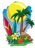 Bränning och palmträd Arkivfoton