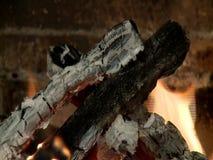 bränt trä arkivfilmer