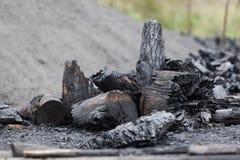Bränt trä i öppen grop Fotografering för Bildbyråer