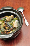 Bräserad fisk Arkivfoton