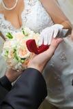 Bräutigam gibt der Braut einen Goldring Lizenzfreies Stockfoto