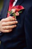 Bräutigam mit Blume - Bräutigam Boutonniere Lizenzfreies Stockfoto