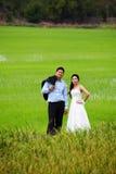 Bräutigam und Braut, die auf einem Paddygebiet aufwerfen Lizenzfreie Stockfotografie