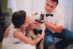 Bräutigam und Braut, die zu Hause mit ihrem Hund Labrador spielen Stockfotos