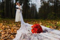 Bräutigam und Braut mit sehr langem Brautschleier Lizenzfreies Stockfoto
