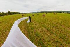 Bräutigam und Braut mit sehr langem Brautschleier auf dem Hintergrund des grünen Feldes Stockbilder