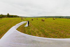 Bräutigam und Braut mit sehr langem Brautschleier auf dem Hintergrund des grünen Feldes Stockfotografie