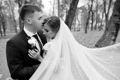 Bräutigam und Braut zusammen Gleichheit, Krawatte und Kristallschmucksachen lizenzfreies stockbild