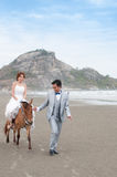 Bräutigam- und Brautumarmung Lizenzfreies Stockbild
