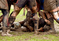 bråka rugbysporten Fotografering för Bildbyråer