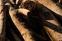 Bråte som väntar för att bearbetas på sågverket solljus på texturen arkivfoto