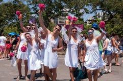 Brésiliens dans le carnaval Image libre de droits