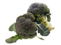 Brócolis Imagens de Stock