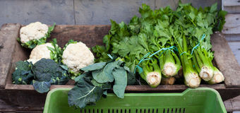 Brócolis, aipo e couves-flor Foto de Stock