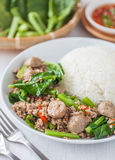 Brócolis chineses fritados com a bola da carne de porco e de carne foto de stock royalty free