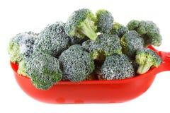 Brócolis congelados isolados imagem de stock