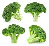 Brócolis crus isolados fotografia de stock royalty free