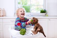 Brócolis de alimentação do rapaz pequeno ao dinossauro do brinquedo Imagem de Stock Royalty Free