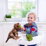Brócolis de alimentação do rapaz pequeno ao dinossauro do brinquedo Fotos de Stock