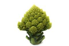 Brócolis de Romanesco no fundo branco Foto de Stock Royalty Free