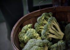 Brócolis escolhidos frescos em uma cesta fotos de stock royalty free