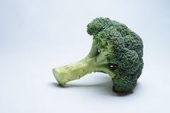 Brócolis isolados em um fundo branco Imagens de Stock Royalty Free