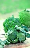 Brócolis orgânicos frescos (brocolli) imagem de stock