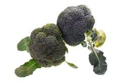 Brócolos Imagens de Stock Royalty Free