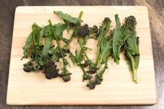 Brócolos emergentes roxos Imagem de Stock Royalty Free