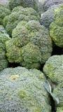 Brócolos verdes Imagens de Stock
