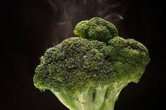 Bróculi Fotos de archivo libres de regalías