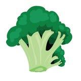 Bróculi ilustración del vector