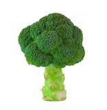 Bróculi aislado Fotografía de archivo libre de regalías